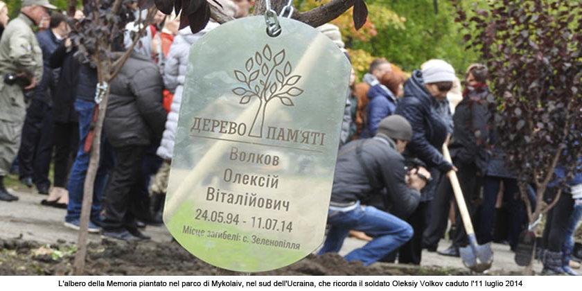 albero-della-memoria-al-soldato-Mykolaiv
