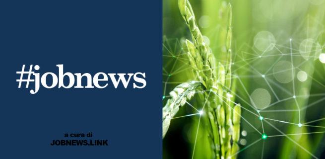 AGRICOLTURA: RICHIESTE <BR> LE FIGURE NELL'AMBITO IT